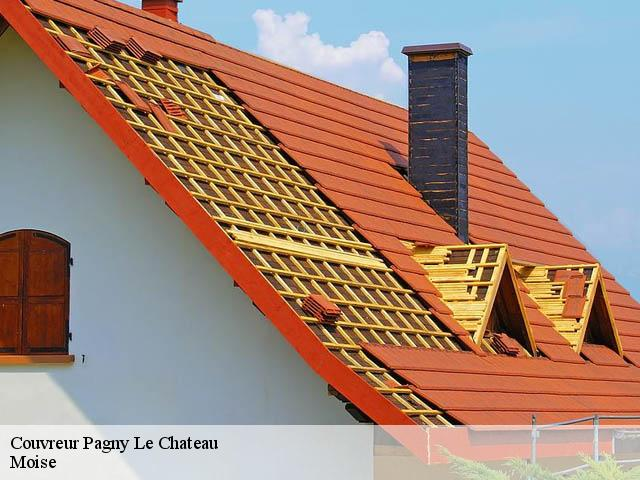 Couvreur  pagny-le-chateau-21250 Moise