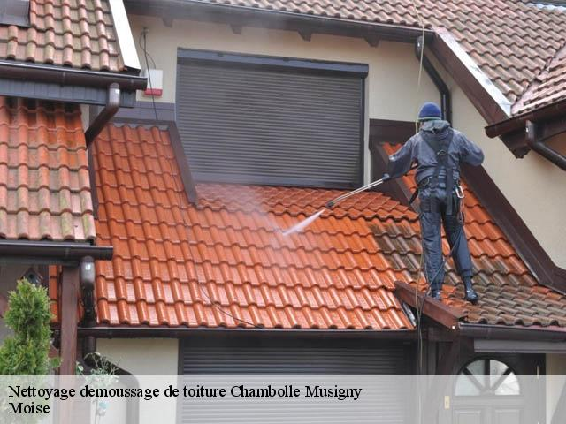 Nettoyage demoussage de toiture  chambolle-musigny-21220 Moise